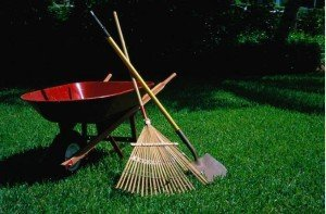 Lawn-tools-Image